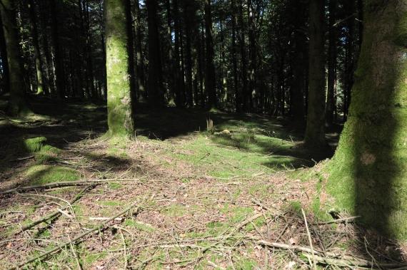 forêts folies guéret