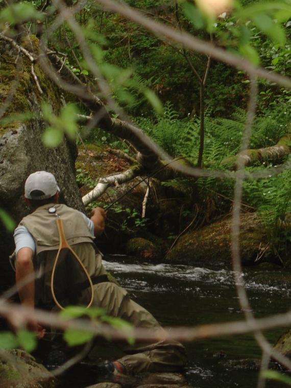 Moniteur guide de pêche Région Centre loir et cher