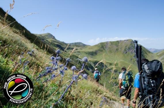 Accompagnateur en Montagne en pays de Savoie et pêche à la mouche